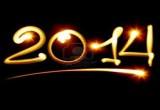 السنة الجديدة 2014