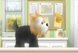 لعبة تنظيف الكلاب