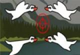 لعبة صيد الطيور بالبندقية 2014