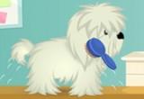 لعبة تنظيف الكلاب الانيقة